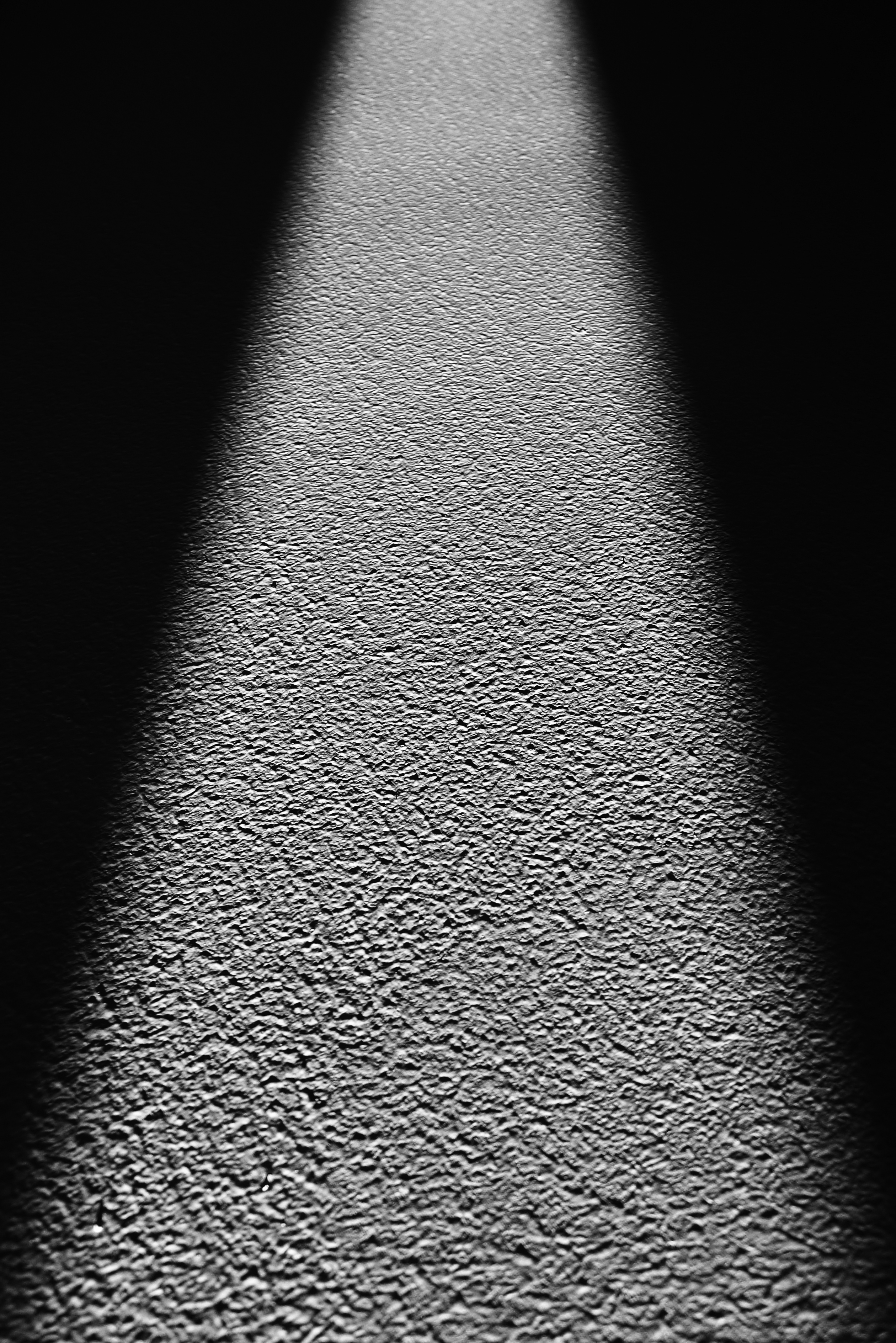 P1050818 bearb svartvit